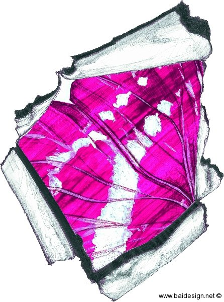 Bai Series 1 Pink