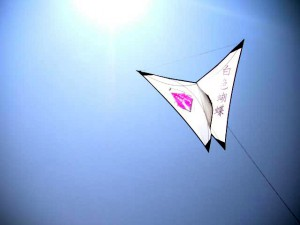 Freestyle Single Line Kite Bai Se Hue Die