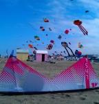 Berck Sur Mer Kite Festival