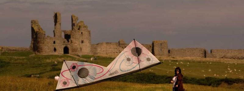 Revolution kite at sunset