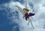 Basingstoke International Kite Festival