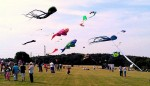 Dunstable Downs Kite Festival 2014